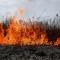 Започва пожароопасният сезон, ще глобяват за палене на стърнища, сухи треви, пасища и други дейности, предизвикващи пожари
