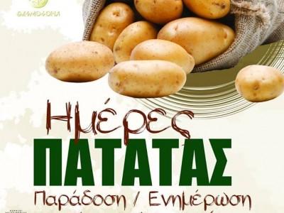 Състезание по белене на картофи
