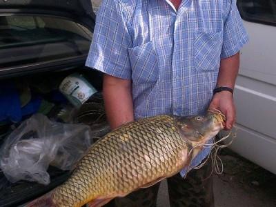 Запален рибар успя да извади чудовище на брега на язовир Потами