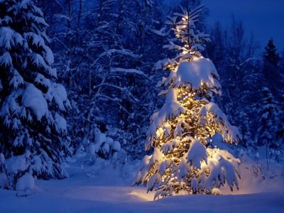 От следващата седмица започват Коледните и новогодишни празници в Гоце Делчев