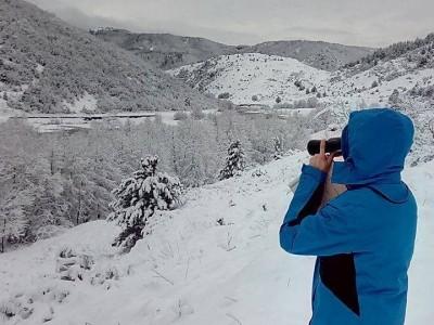 Броят на птиците показва кои са опасностите от промяна на околната среда по река Места и край язовир Доспат
