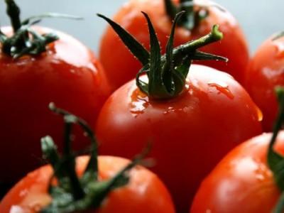 Проверяват за внос на изгнили зеленчуци от Гърция и Македония