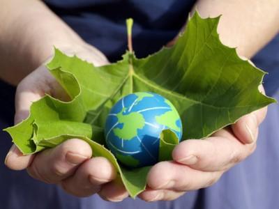 Две от гимназиите в Гоце Делчев ще отбележат с интересни прояви Международния ден на земята