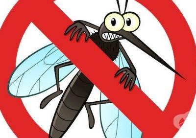 От утре до 1 юли ще пръскат срещу комари в Гоце Делчев, Сатовча, Доспат и Гърмен