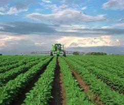 По 500-600 евро спестява месечно български земеделски работник в полята на Гърция