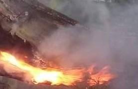 Пожари в Туховище и Огняново гасиха огнеборци