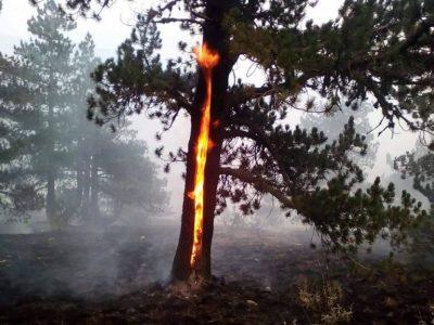 Все още тлее пожар близо до българо-гръцката граница край Гоце Делчев