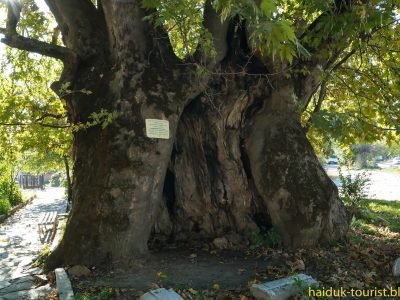 Ротарианците в Гоце Делчев събират средства за музей на открито в Гърмен