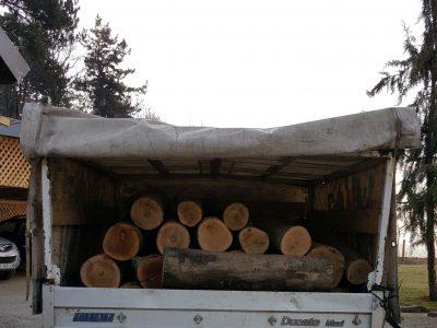 Задържаха нарушител с крадени дърва