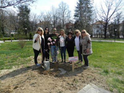 """Дамите от Сдружение """"Хроника срещу рака"""" посадиха красив символ на любовта към живота в парка на град Гоце Делчев"""