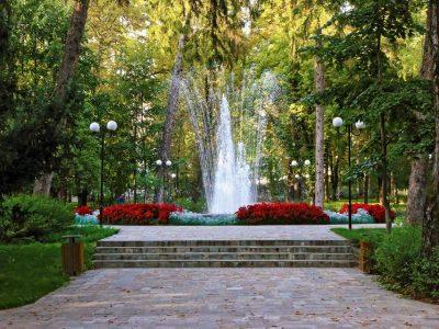 Живеещи в столицата гоцеделчевци, ще засадят дръвчета в парка на родния си град