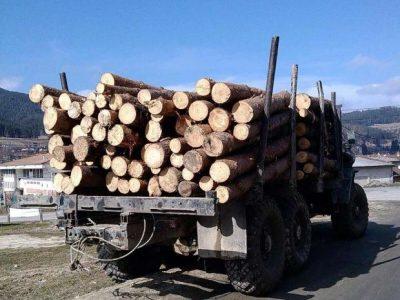 Предотвратен е опит за измама при превоз на дървесина