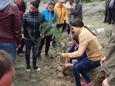 Децата на село Дъбница засадиха 100 фиданки