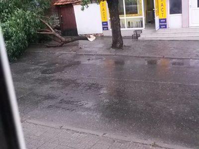 Кратка буря повали дървета в Гоце Делчев, градушка и силен вятър в полето край града
