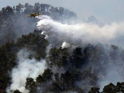 Овладян е големият пожар край село Стара Кресна