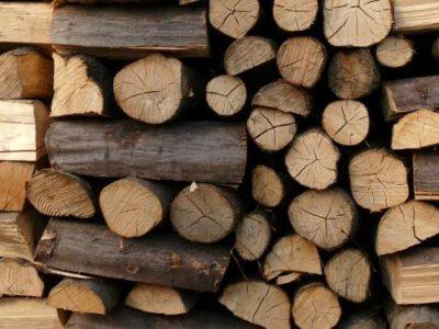 46 кубически метра дърва са задържани за седмица в ЮЗДП
