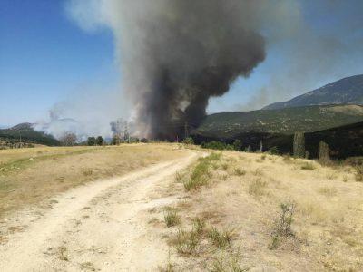 Награди за горските, гасили големия пожар в Пирин