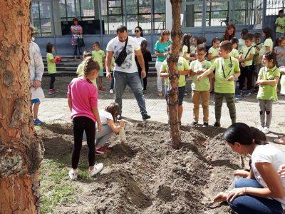 Усмивки и засaдени цветя в Деня на мира в Трето ОУ в град Гоце Делчев