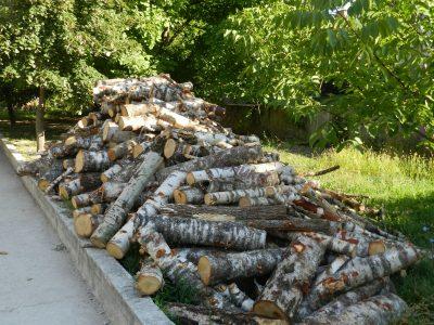 200 хиляди кубика дърва за огрев на хората от Югозапада