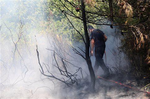 Наградиха 470 служители, участвали в потушаването на големия пожар в Пирин