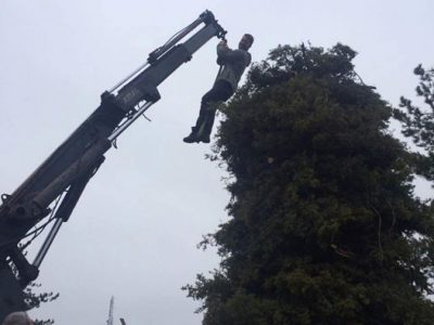 Забранено е издигането на Сирници в зелени площи в Гоце Делчев