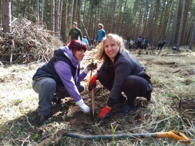 Доброволци залесяват нови гори