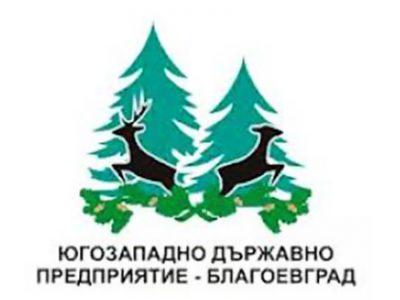 Югозападното държавно предприятие спира временно електронните търгове за продажба на дървесина