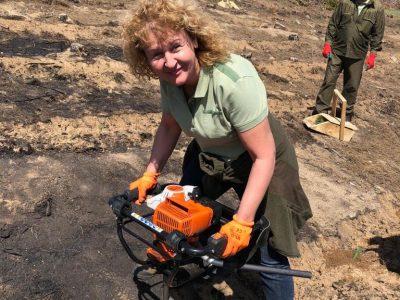 Започна възстановяването на изгорелите гори край Стара Кресна