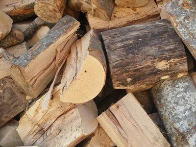 Над 5300 домакинства разчитат на дърва за огрев от Югозападното държавно предприятие