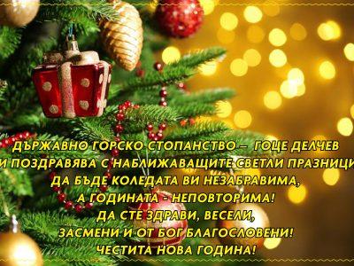 Държавно горско стопанство – Гоце Делчев: ЧЕСТИТА НОВА ГОДИНА!