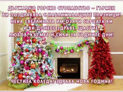 ДГС – ГЪРМЕН: Здраве, щастие, любов, късмет и сили за бъдните дни!