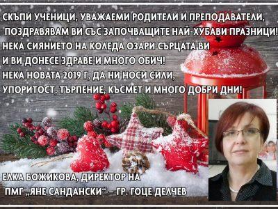 """Директорът на ПМГ """"Яне Сандански"""" Елка Божикова: Нека Новата 2019 г. да ни носи сили, упоритост, търпение, късмет и много добри дни!"""