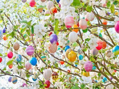 Горско стопанство Гоце Делчев: Нека Великденските празници са изпълнени с радост и много щастливи изненади!