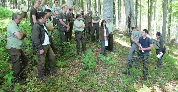 Горски специалисти обсъждат модерни методи за стопанисване на горите, борови масиви боледуват и съхнат