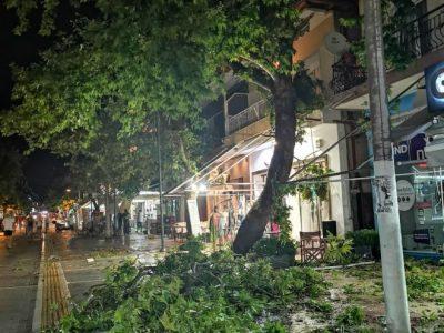 Шестима мъртви след бурята в Халкидики, десетки ранени