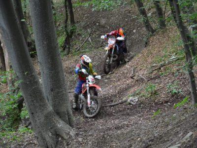 Контрол върху моторните спортове в горите