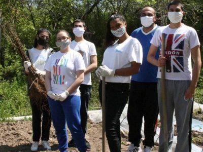1200 млади фиданки засадиха в гр. Гоце Делчев