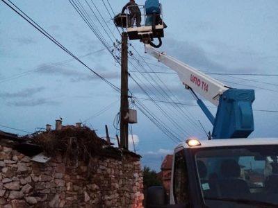 Силна буря в село Хвостяне, спасителна операция за малко щъркелче