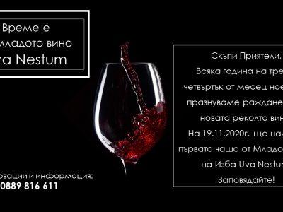 Първа чаша от младото вино на изба UVA NESTUM
