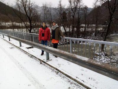 Чувствително намаление на броя на птиците по река Места и язовир Доспат е регистрирано при зимното им преброяване