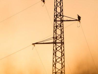 Виж къде ще спира тока от днес до 5 февруари