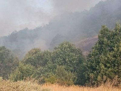 Пожарът край Голешово и Петрово все още не е овладян